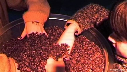 CafeShow-grain de café